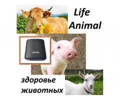 Помощь ветеринару прибор Life Animal. 4 мощности. Гарантия.