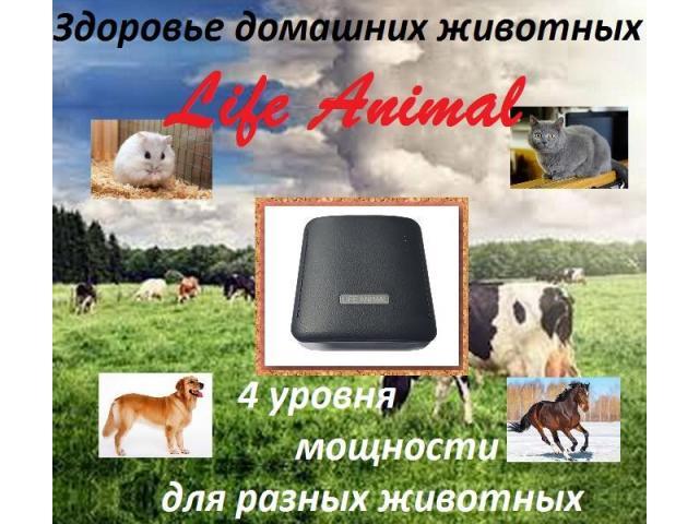 Помощь ветеринару прибор Life Animal. 4 мощности. Гарантия. - 2/6