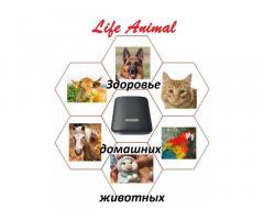 Помощь ветеринару прибор Life Animal. 4 мощности. Гарантия. - Изображение 4/6