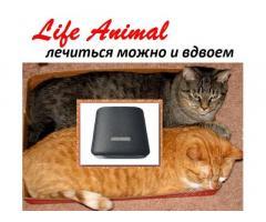 Помощь ветеринару прибор Life Animal. 4 мощности. Гарантия. - Изображение 5/6