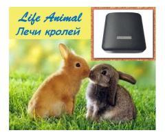 Помощь ветеринару прибор Life Animal. 4 мощности. Гарантия. - Изображение 6/6