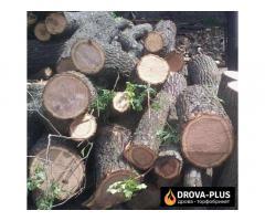 Drova-plus виготовляє у Луцьку дрова рубані дрова метровий кругляк