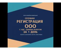РегистрацияООО Днепр за 1 день.