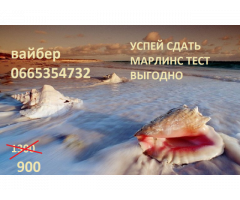 МАРЛИНС ТЕСТ Сдам дешево и качественно