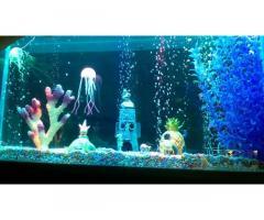 Свет для аквариума, террариума, светильник, освещение, лампа.