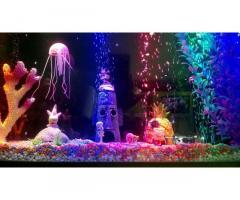 Свет для аквариума, террариума, светильник, освещение, лампа. - Изображение 5/7