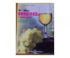 40-100 кг винограда с одного куста в Северных и Центральных областях Украины