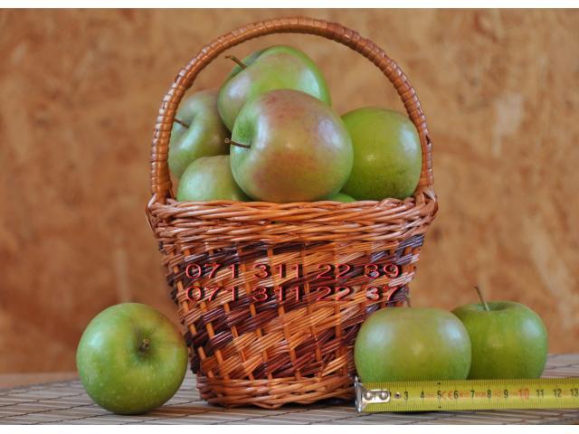 Красивые вкусные яблоки из сада - 2/10